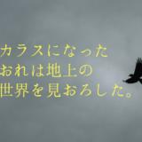 NHKドラマ「カラスになったおれは地上の世界を見おろした。」