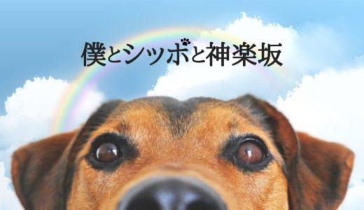 「僕とシッポと神楽坂」第1話|動物たちの名演技に癒やされる